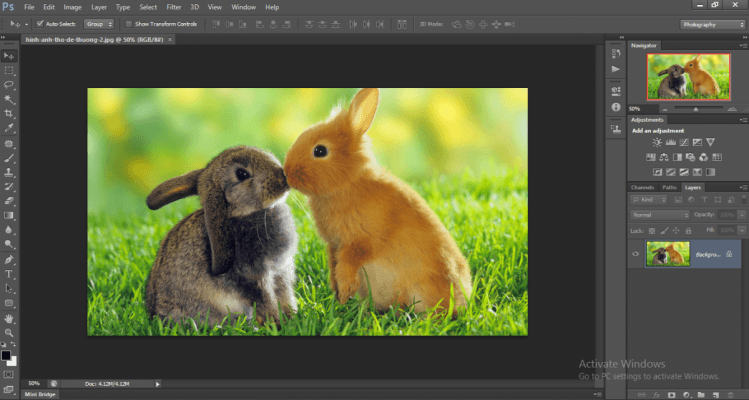 cách tách màu pha trong photoshop