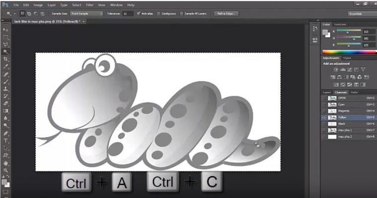 cách tạo hạt tram trong photoshop