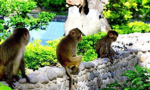 Kinh nghiệm du lịch Nha Trang tháng 12